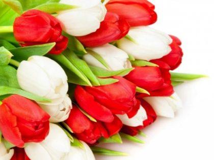 Поздравления с Международным женским днем 8 марта