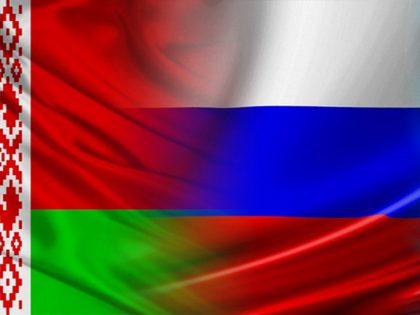 НИР «Здоровье населения регионов Северо-Западного федерального округа РФ и Республики Беларусь как стратегический компонент трудового потенциала» (2011-2013)
