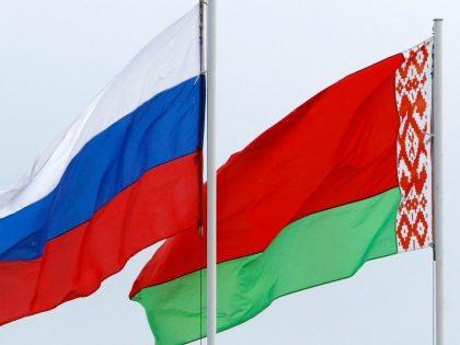 НИР «Профессиональное призвание: человеческий потенциал инновационного развития России и Беларуси» (2015-2017)