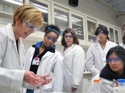 Женщины в науке: «Самореализация возможна только в том виде деятельности, который воспринимается как призвание»